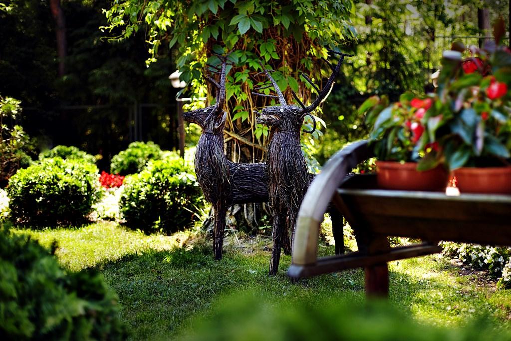 Nasze ogrody